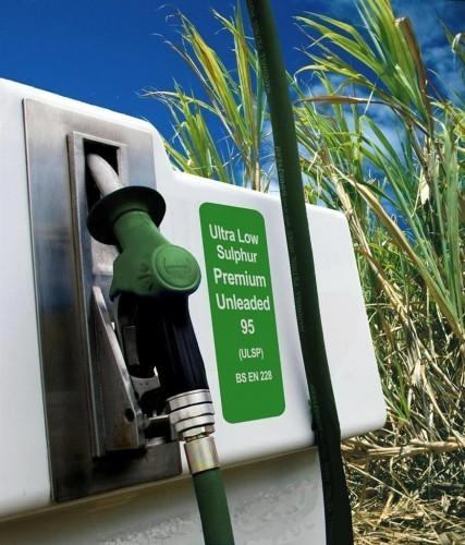 سوخت های گیاهی جایگزین نفت و بنزین