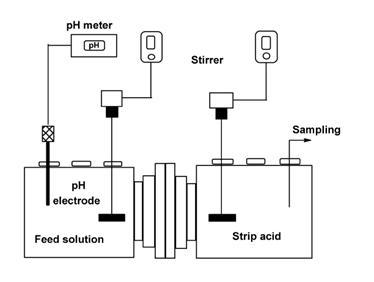 مقایسه روش غشای مایع تثبیت شده (SLM) و استخراج با حلال (SX) دراستخراج یون کبالت از محلول رقیق